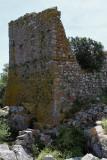 1232 Une semaine en Corse du sud - A week in south Corsica -  IMG_9130_DxO Pbase.jpg