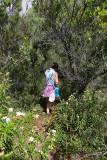 1246 Une semaine en Corse du sud - A week in south Corsica -  IMG_9144_DxO Pbase.jpg