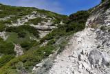 1368 Une semaine en Corse du sud - A week in south Corsica -  IMG_9280_DxO Pbase.jpg
