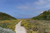 1378 Une semaine en Corse du sud - A week in south Corsica -  IMG_9290_DxO Pbase.jpg