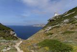 1380 Une semaine en Corse du sud - A week in south Corsica -  IMG_9292_DxO Pbase.jpg