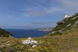 1383 Une semaine en Corse du sud - A week in south Corsica -  IMG_9295_DxO Pbase.jpg