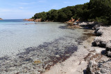 1405 Une semaine en Corse du sud - A week in south Corsica -  IMG_9317_DxO Pbase.jpg
