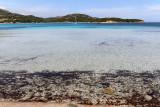 1411 Une semaine en Corse du sud - A week in south Corsica -  IMG_9323_DxO Pbase.jpg