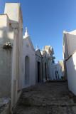 1478 Une semaine en Corse du sud - A week in south Corsica -  IMG_9396_DxO Pbase.jpg