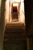 1565 Une semaine en Corse du sud - A week in south Corsica -  IMG_9484_DxO Pbase.jpg