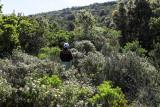 1586 Une semaine en Corse du sud - A week in south Corsica -  IMG_9505_DxO Pbase.jpg