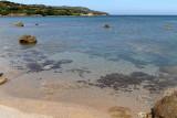 1616 Une semaine en Corse du sud - A week in south Corsica -  IMG_9536_DxO Pbase.jpg