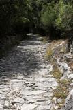 1618 Une semaine en Corse du sud - A week in south Corsica -  IMG_9538_DxO Pbase.jpg