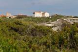 1631 Une semaine en Corse du sud - A week in south Corsica -  IMG_9551_DxO Pbase.jpg