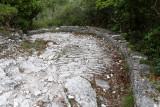 1674 Une semaine en Corse du sud - A week in south Corsica -  IMG_9591_DxO Pbase.jpg