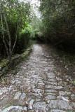 1676 Une semaine en Corse du sud - A week in south Corsica -  IMG_9593_DxO Pbase.jpg