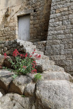 1739 Une semaine en Corse du sud - A week in south Corsica -  IMG_9658_DxO Pbase.jpg