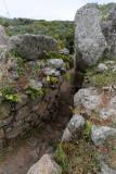 1833 Une semaine en Corse du sud - A week in south Corsica -  IMG_9753_DxO Pbase.jpg