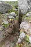 1835 Une semaine en Corse du sud - A week in south Corsica -  IMG_9755_DxO Pbase.jpg