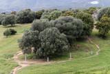 1892 Une semaine en Corse du sud - A week in south Corsica -  IMG_9813_DxO Pbase.jpg
