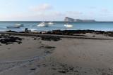 788 Mauritius island - Ile Maurice 2014 - IMG_5223_DxO Pbase.jpg