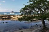 796 Mauritius island - Ile Maurice 2014 - IMG_5231_DxO Pbase.jpg