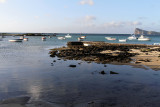 797 Mauritius island - Ile Maurice 2014 - IMG_5232_DxO Pbase.jpg