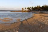 810 Mauritius island - Ile Maurice 2014 - IMG_5245_DxO Pbase.jpg