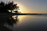 815 Mauritius island - Ile Maurice 2014 - IMG_5250_DxO Pbase.jpg