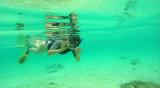 40 Mauritius island - Ile Maurice 2014 - G0281325_DxO Pbase.jpg