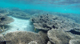 60 Mauritius island - Ile Maurice 2014 - G0411380_DxO Pbase.jpg