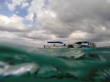 616 Mauritius island - Ile Maurice 2014 - GOPR2326_DxO Pbase.jpg