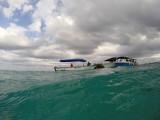 618 Mauritius island - Ile Maurice 2014 - GOPR2328_DxO Pbase.jpg
