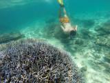 686 Mauritius island - Ile Maurice 2014 - GOPR2401_DxO Pbase.jpg