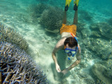 688 Mauritius island - Ile Maurice 2014 - GOPR2403_DxO Pbase.jpg