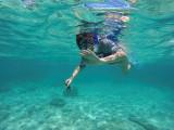 700 Mauritius island - Ile Maurice 2014 - GOPR2415_DxO Pbase.jpg
