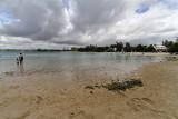 1287 Mauritius island - Ile Maurice 2014 - IMG_5730_DxO Pbase.jpg
