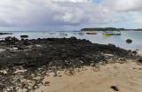1291 Mauritius island - Ile Maurice 2014 - IMG_5734_DxO Pbase.jpg