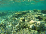 1026 Mauritius island - Ile Maurice 2014 - GOPR2854_DxO Pbase.jpg