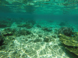 1173 Mauritius island - Ile Maurice 2014 - GOPR3016_DxO Pbase.jpg