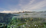 1217 Mauritius island - Ile Maurice 2014 - GOPR3061_DxO Pbase.jpg