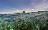 1219 Mauritius island - Ile Maurice 2014 - GOPR3063_DxO Pbase.jpg