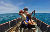 1227 Mauritius island - Ile Maurice 2014 - GOPR3071_DxO Pbase.jpg