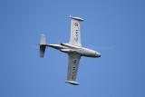 210 Meeting aerien de la Ferte Alais  - IMG_5823_DxO Pbase.jpg