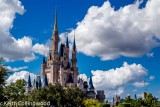 Walt Disney World Galleries