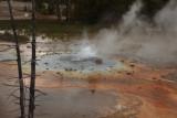 4299 Mammoth Hot Springs.jpg