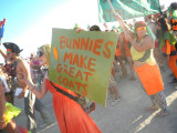 Carrot Protest