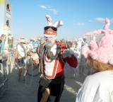 Mein Hare Bunny Hop