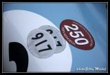 cupprintemps2014-006.jpg