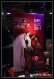 World Arabian Horse Championship PARIS 2014