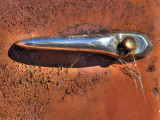 Rust and Chrome