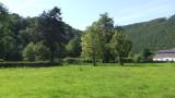 Saftige Wiesen im Wesertal bei Chaudfontaine