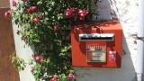 Postkasten und Mauerblumen