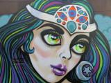 Auckland 2013 graffiti